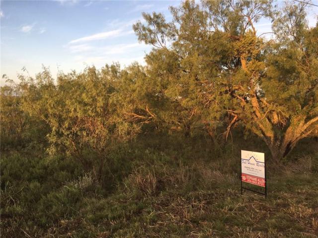 000 Comanche Lake Road, Comanche, TX 76442 (MLS #13709392) :: Team Hodnett