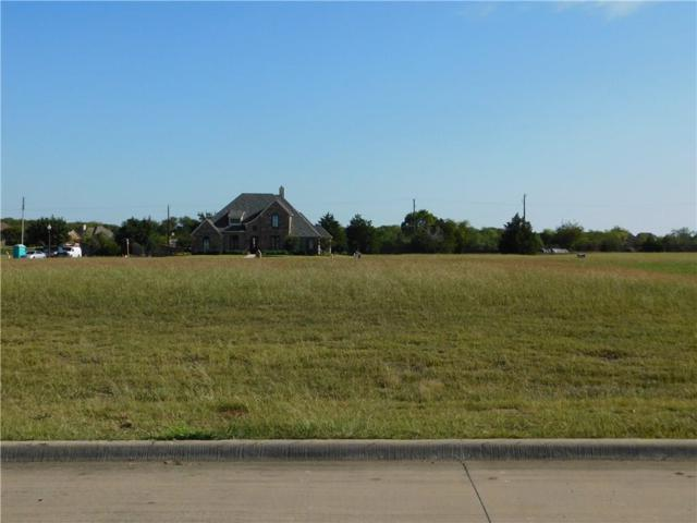 1503 Hudson Drive, Ennis, TX 75119 (MLS #13710882) :: RE/MAX Preferred Associates