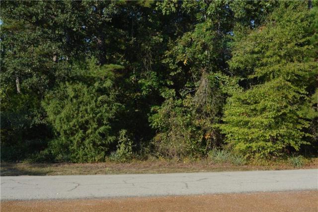 Lot687 Charlya Drive, Scroggins, TX 75457 (MLS #13711934) :: Team Hodnett