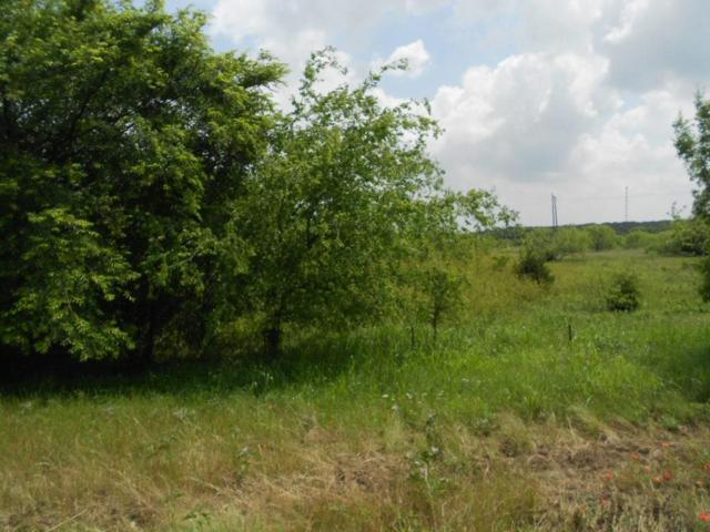 TBD Service Rd Hwy 287, Bowie, TX 76230 (MLS #13713473) :: The Sarah Padgett Team
