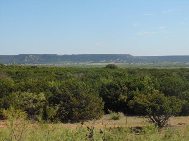 1525 County Rd 650, Tuscola, TX 79562 (MLS #13714128) :: The Tonya Harbin Team
