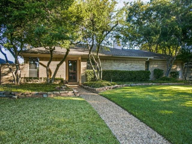 3821 Saddlehead Drive, Plano, TX 75075 (MLS #13714242) :: Robbins Real Estate