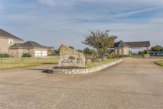 2009 Palomino Boulevard, Crowley, TX 76036 (MLS #13714305) :: The Mitchell Group