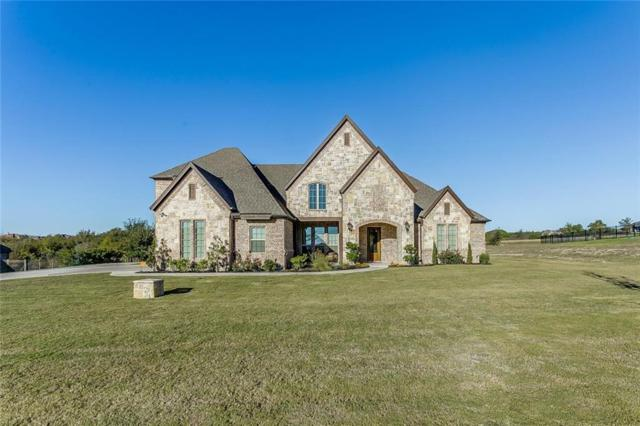 210 Rising Oak Drive, Aledo, TX 76008 (MLS #13714823) :: The Mitchell Group