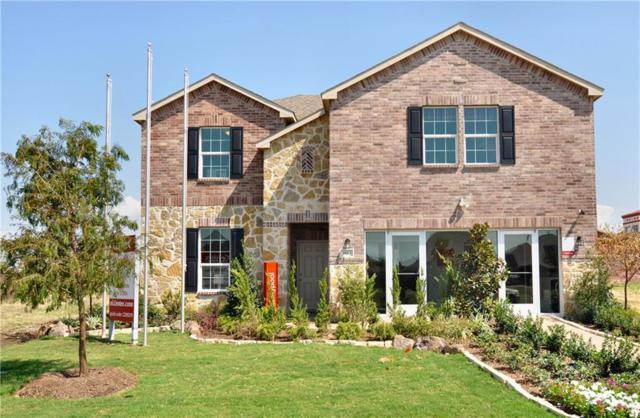 1613 Flamingo Drive, Little Elm, TX 75068 (MLS #13716413) :: Team Tiller