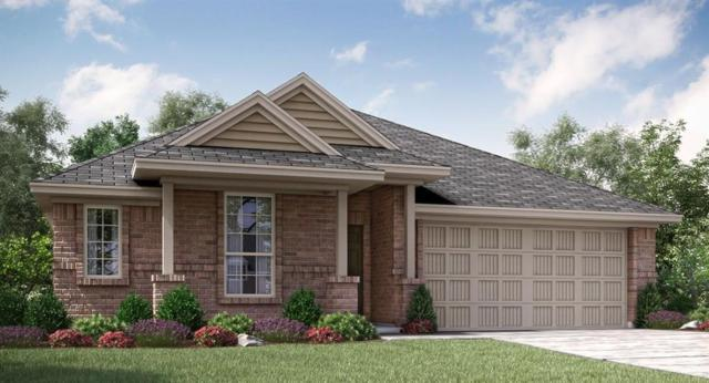 123 Rain Cloud Drive, Waxahachie, TX 75165 (MLS #13716683) :: Pinnacle Realty Team