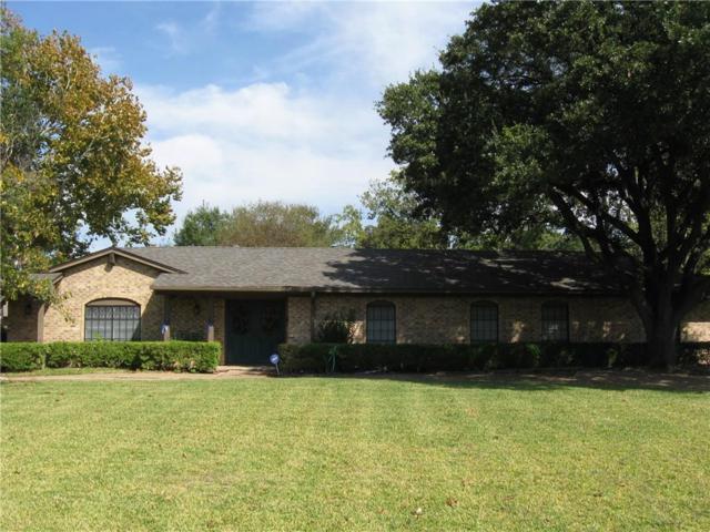 10128 Plummer Drive, Dallas, TX 75228 (MLS #13716844) :: The Mitchell Group