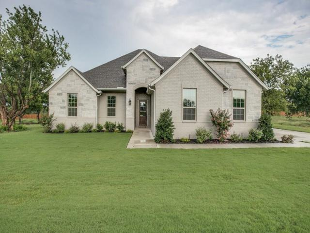 11008 Chriswood Drive, Fort Worth, TX 76036 (MLS #13717207) :: RE/MAX