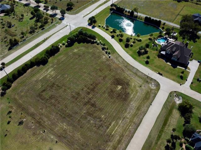 3602 Margaux Drive, Parker, TX 75002 (MLS #13717246) :: RE/MAX Town & Country