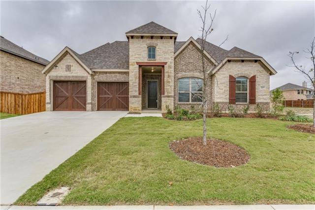 425 Salt Cedar Drive, Midlothian, TX 76065 (MLS #13726720) :: Team Hodnett