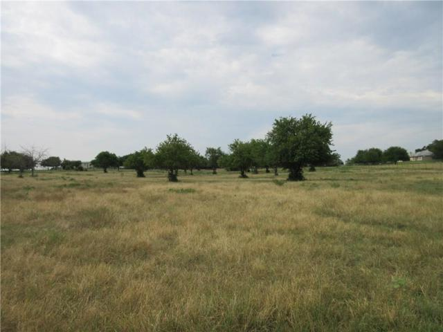 11438 Cartwright, Ponder, TX 76259 (MLS #13727502) :: The Real Estate Station