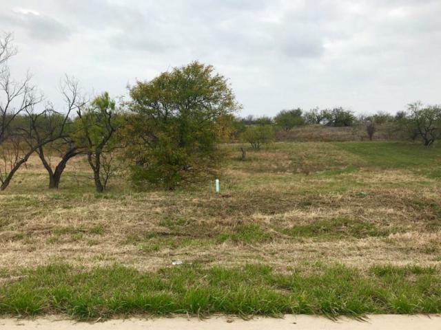 1103 Periwinkle Court, Grand Prairie, TX 75104 (MLS #13729009) :: Team Hodnett