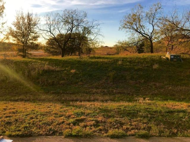 1248 Serenity Court, Grand Prairie, TX 75104 (MLS #13729163) :: Team Hodnett