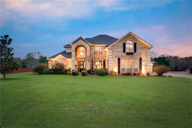 2185 Lucas Creek Drive, Lucas, TX 75002 (MLS #13729298) :: Kindle Realty