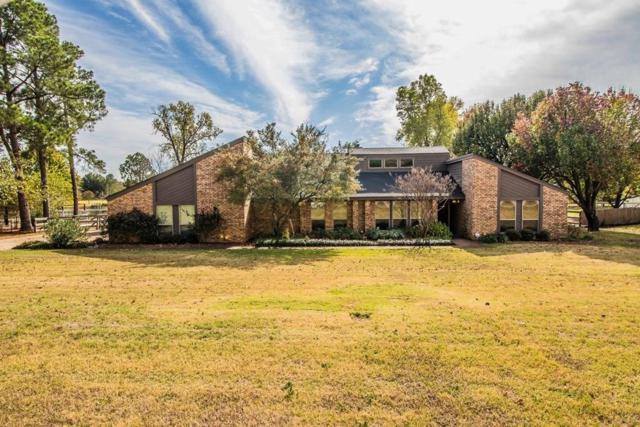 710 Cross Timbers Drive, Double Oak, TX 75077 (MLS #13730747) :: Kindle Realty