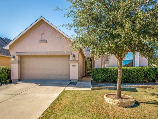 9100 Perimeter Street, Denton, TX 76207 (MLS #13733826) :: Team Tiller