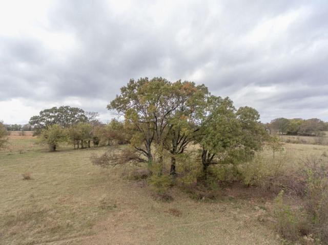 1981 N Fm 17, Alba, TX 75410 (MLS #13733937) :: MLux Properties