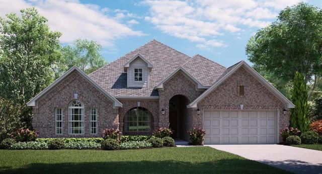 16542 Moss Haven Lane, Frisco, TX 75068 (MLS #13735389) :: Team Hodnett