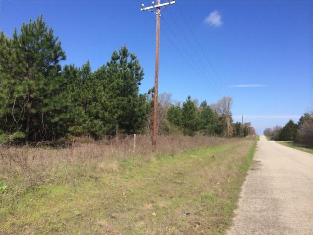14132 SE County Road 2370, Streetman, TX 75859 (MLS #13736262) :: RE/MAX Landmark