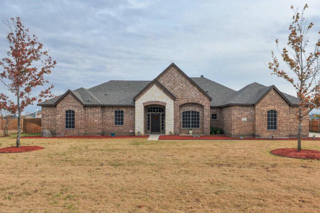 418 Cimarron Meadows Drive, Waxahachie, TX 75167 (MLS #13738169) :: RE/MAX Preferred Associates