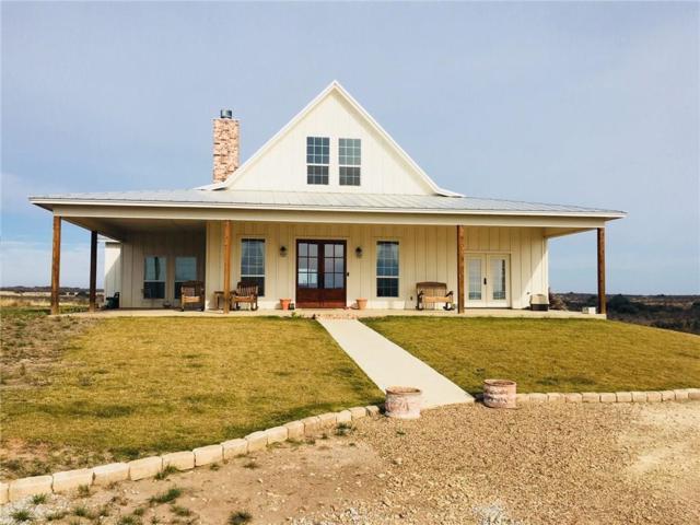 148 Blue Herron Court, Comanche, TX 76442 (MLS #13738747) :: Team Hodnett
