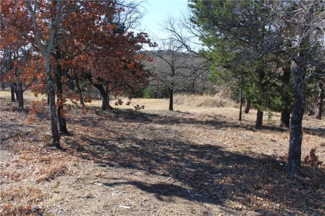Lot 5 Tanglewood Boulevard, Pottsboro, TX 75076 (MLS #13740998) :: Team Hodnett