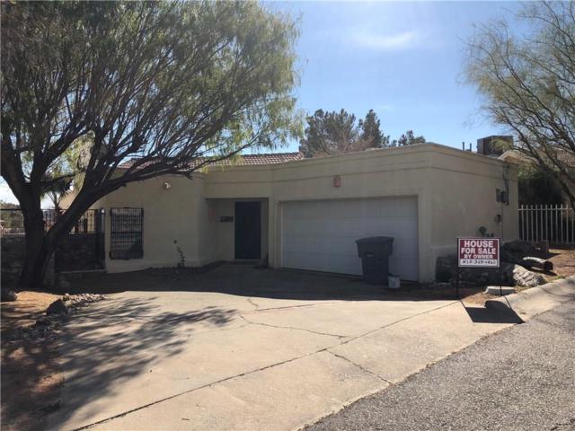3204 Canyon Point Lane, El Paso, TX 79904 (MLS #13741599) :: Team Hodnett