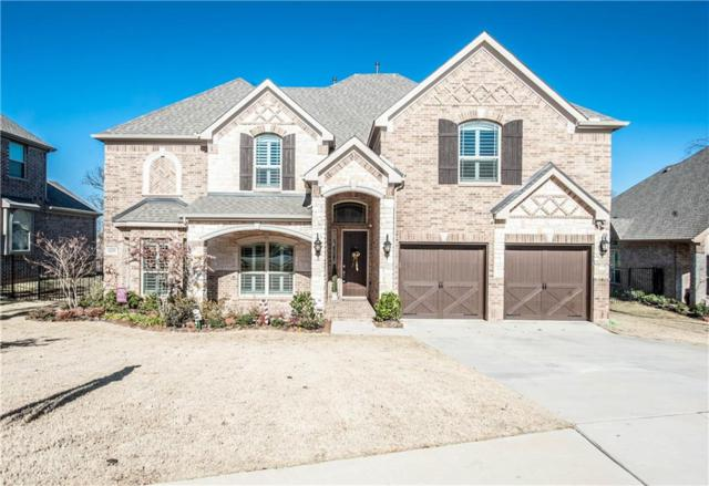 1229 Ardglass Trail, Corinth, TX 76210 (MLS #13742395) :: Real Estate By Design