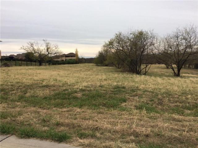 1001 Sweeping Meadows Lane, Cedar Hill, TX 75104 (MLS #13743304) :: Century 21 Judge Fite Company