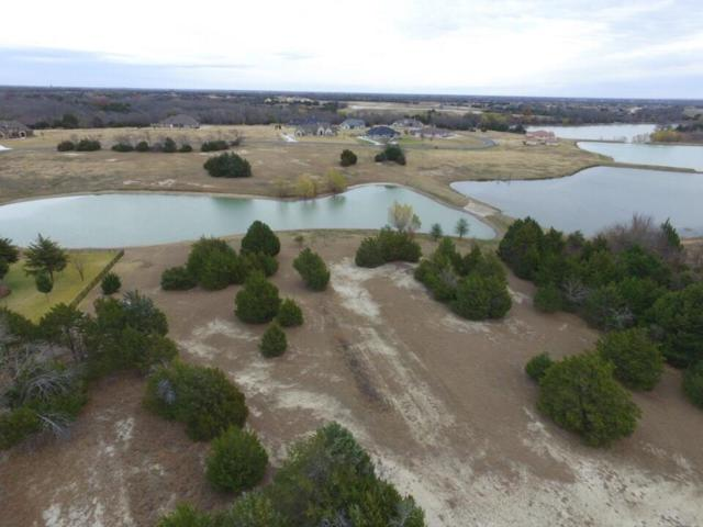 B111 Lake Shore Drive, Mckinney, TX 75071 (MLS #13743641) :: Carrington Real Estate Services