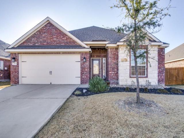413 Lipizzan Lane, Celina, TX 75009 (MLS #13744708) :: Real Estate By Design