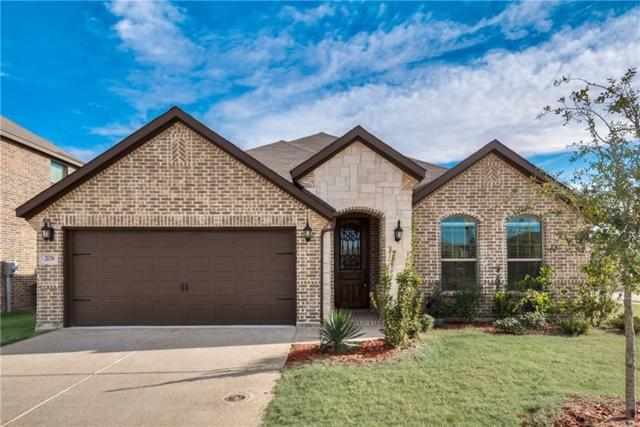 2038 Fair Crest Trail, Forney, TX 75126 (MLS #13745475) :: RE/MAX Landmark