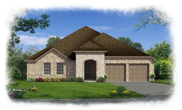 1613 Long Meadow, Wylie, TX 75098 (MLS #13745600) :: Team Hodnett