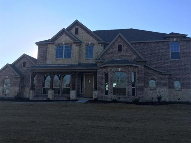 1605 Winding Creek Lane, Rockwall, TX 75032 (MLS #13745627) :: Real Estate By Design