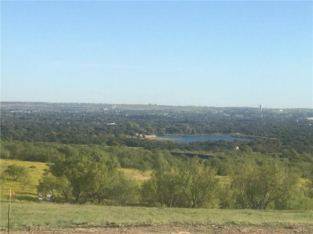 L1BC Overlook Trail, Aledo, TX 76008 (MLS #13746382) :: The Heyl Group at Keller Williams