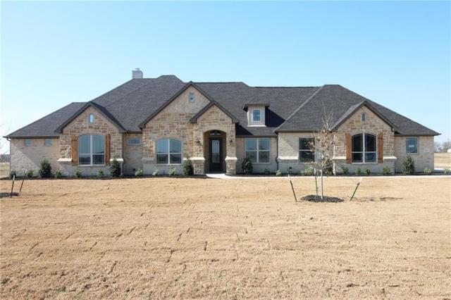 6031 Plainview Road, Midlothian, TX 76065 (MLS #13750622) :: Team Hodnett