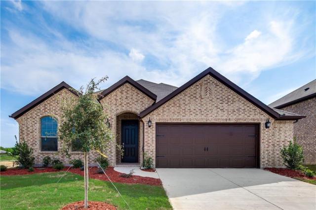 584 Spruce Trail, Forney, TX 75126 (MLS #13753942) :: Team Hodnett