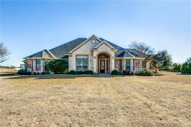 3770 Joe Wilson Road, Midlothian, TX 76065 (MLS #13754193) :: Pinnacle Realty Team
