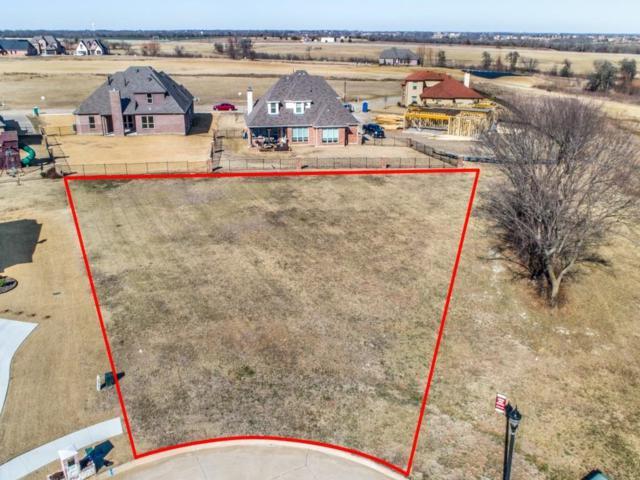 1213 Quail Creek Court, Gunter, TX 75058 (MLS #13754347) :: Team Hodnett