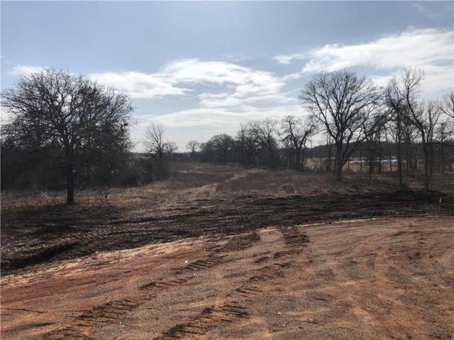 160 Scarlet Oaks Drive, Joshua, TX 76058 (MLS #13754821) :: Team Hodnett