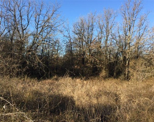 Lot 5 Black Hawk Trail, Nemo, TX 76070 (MLS #13755278) :: RE/MAX Pinnacle Group REALTORS