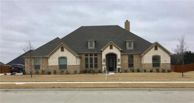 3540 Bryson Manor Drive, Ovilla, TX 75154 (MLS #13756051) :: Team Hodnett