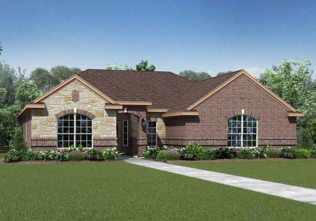 602 Meadow Springs Drive, Glenn Heights, TX 75154 (MLS #13756896) :: Pinnacle Realty Team