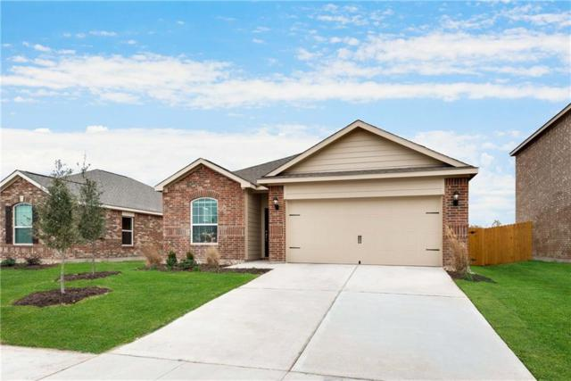 164 Aaron Street, Anna, TX 75409 (MLS #13757038) :: RE/MAX Town & Country