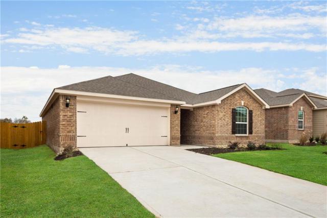 157 Curt Street, Anna, TX 75409 (MLS #13757061) :: RE/MAX Town & Country