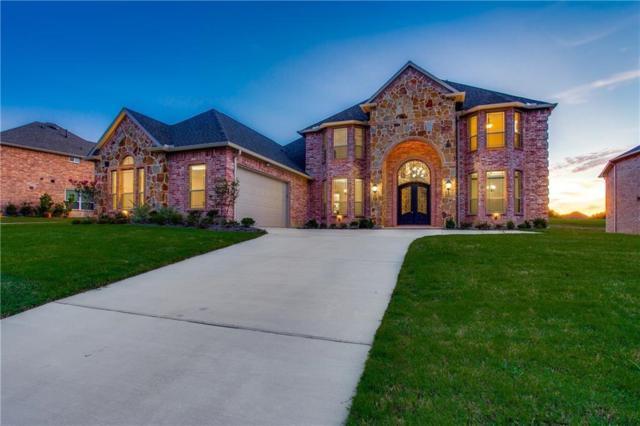 466 Stone Canyon Drive, Sunnyvale, TX 75182 (MLS #13757921) :: Exalt Realty