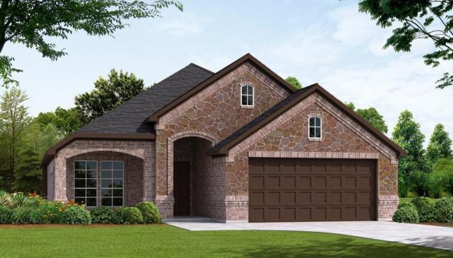 215 Buckskin, Waxahachie, TX 75165 (MLS #13758238) :: Pinnacle Realty Team