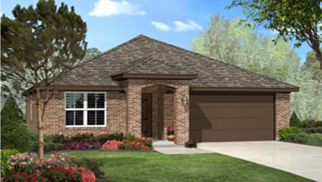 1116 Emerald Leaf Drive, Azle, TX 76020 (MLS #13759713) :: Robinson Clay