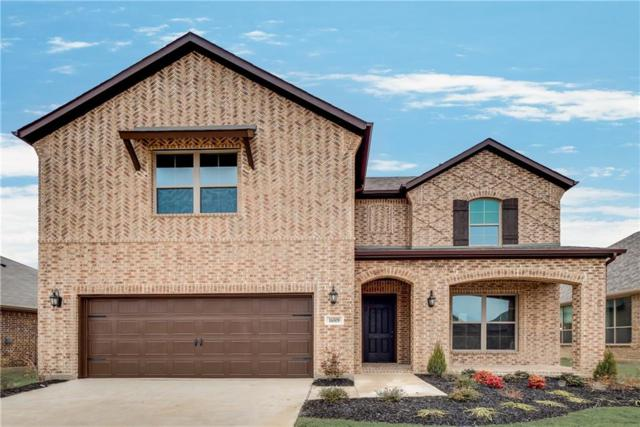16509 Dry Creek Boulevard, Prosper, TX 75078 (MLS #13760238) :: The Cheney Group