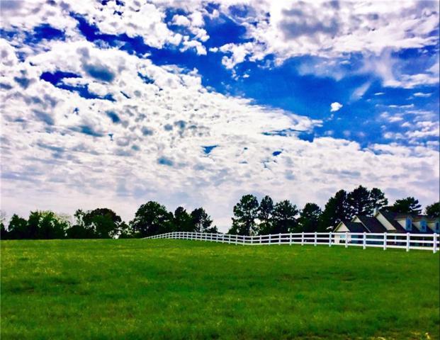 22541 Filiberto Court, Lindale, TX 75771 (MLS #13761222) :: Team Hodnett